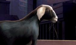 Les androïdes rêvent-ils de moutons électriques? iau