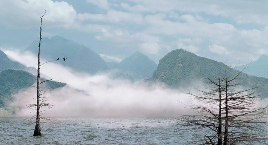 The Mist - Frank Darabont - La brume
